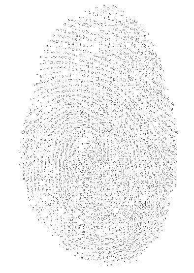 empreintes_william_transparent